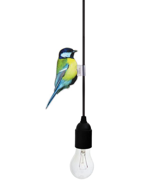 cablebirds_bluetit_white_by_yeayea